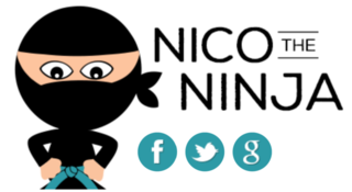 Nico the Ninja - Saving Energy