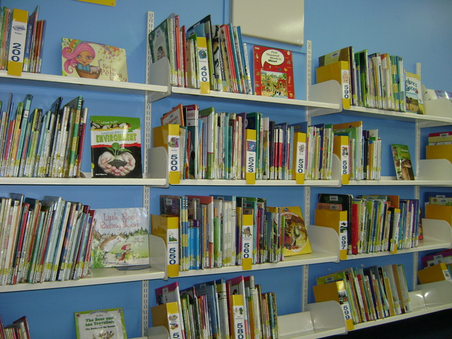 Easy Non Fiction Shelves